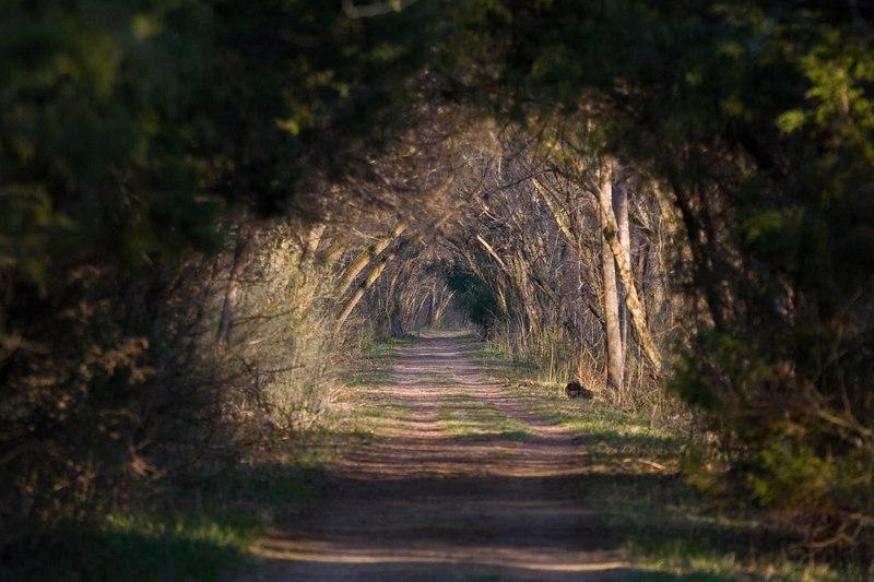 the Chessie Trail, Lexington VA