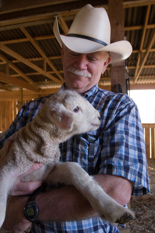 Ron and the first lamb of the season
