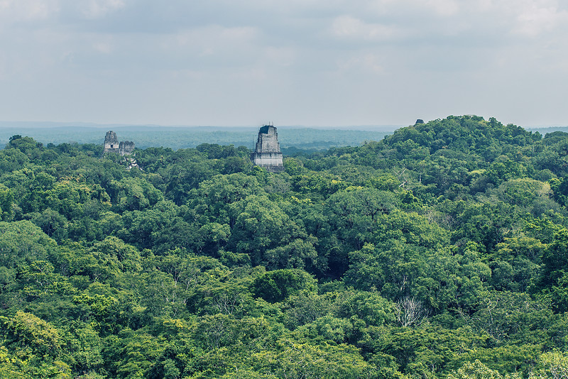 Hundreds of hidden pyramids in Central America. Tikal. Guatemala.