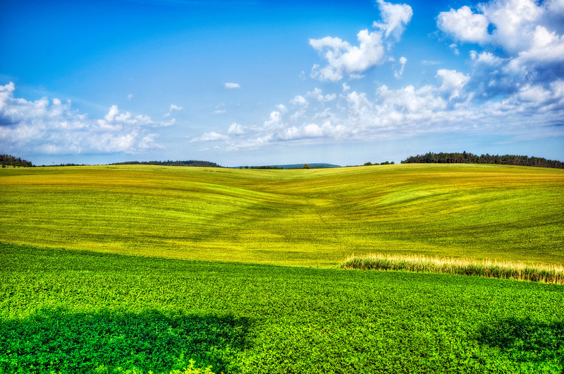 Somewhere in Czech Rep. 80% of Europe country side looks like this.