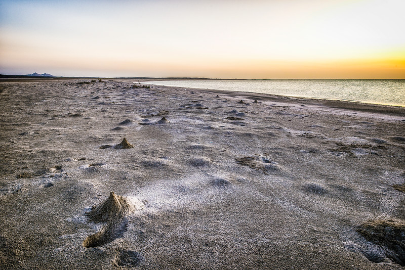 Waiting for sand crabs in Masirah Island