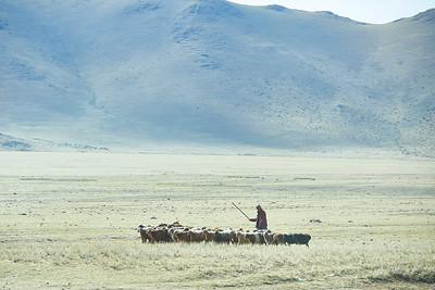 1000 th years. Mongolia.