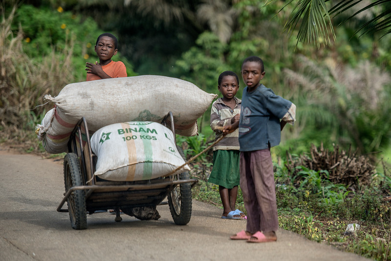 Happy Africa. No WiFI, no iPods, no tears. 3 kids pushing few hundreds kilos of food. Cameroon.