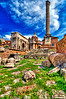 All Empires come to Dust. <br /> Flowers stays the same forever.<br /> <br /> Ancient center of Rome. Center of Empire.