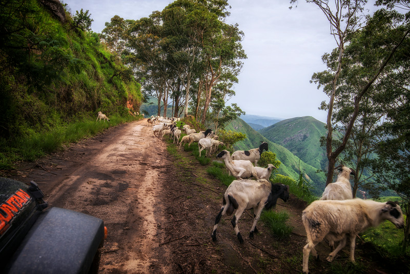 Road blocks in Cameroon