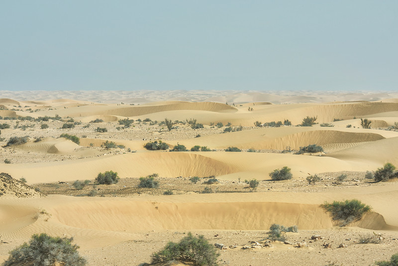 Endless Sahara