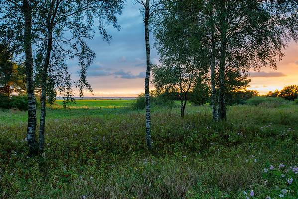 Sunset. August. Lithuania.