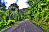 Road between West - East side of Mahe Island