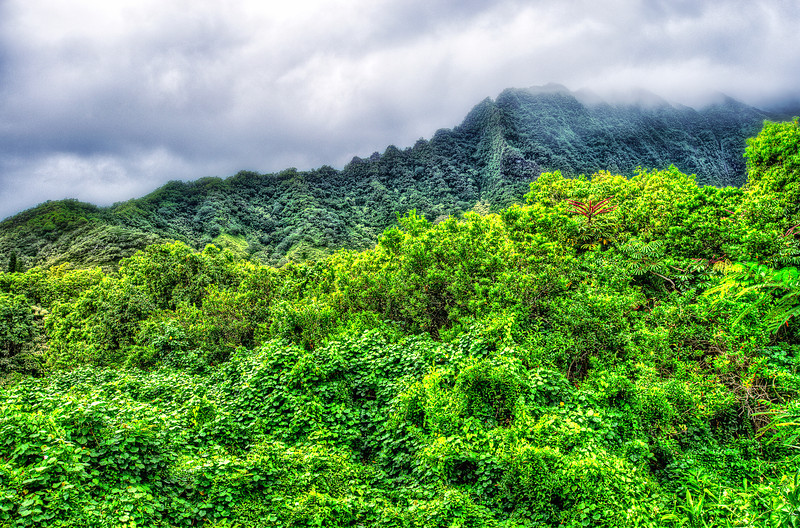 Clouds, Mountains and Greens. Hawaii