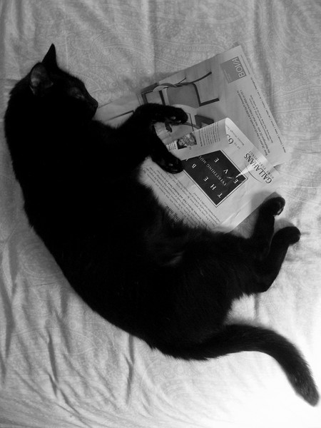Eliot - fell asleep reading in bed