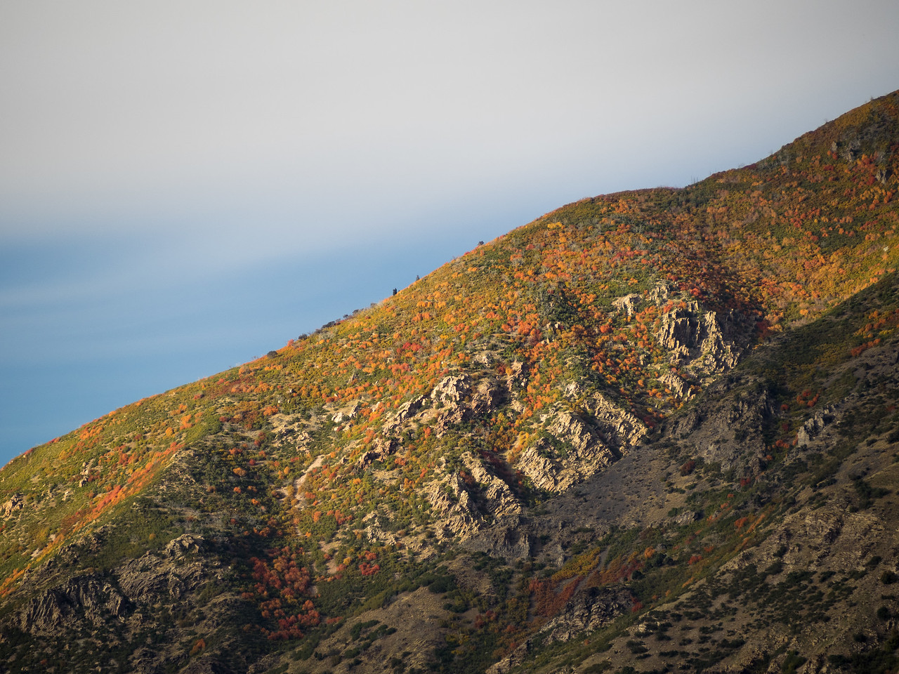 Light on a Mountainside in Autumn