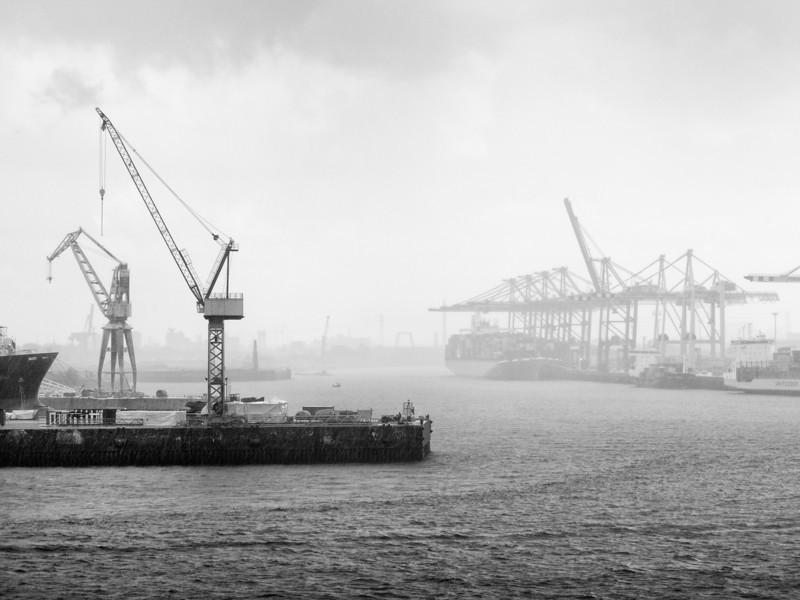 Rainy Cranes