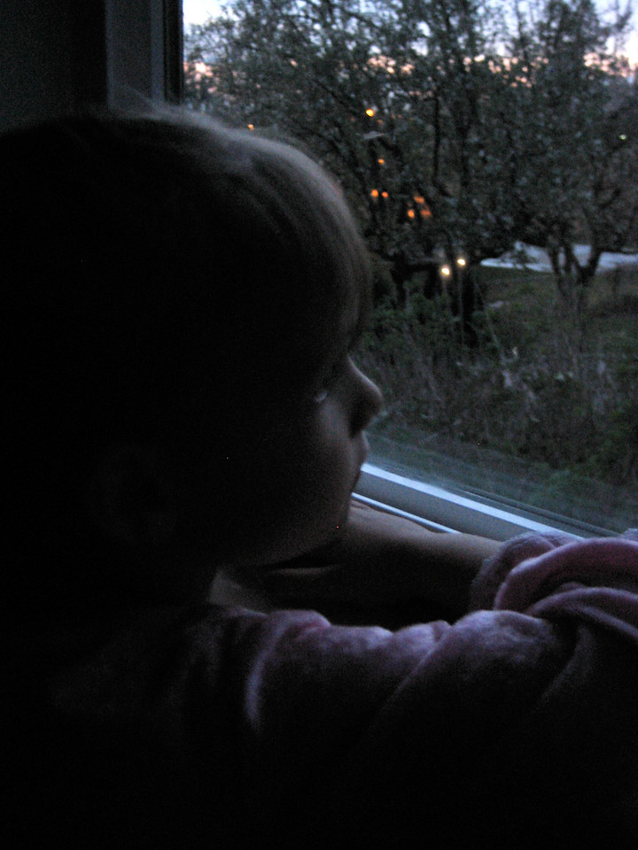 Looking out the Window at Nightfall
