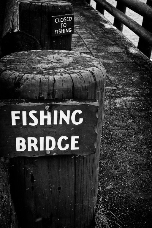 Fishing Bridge … Or Not