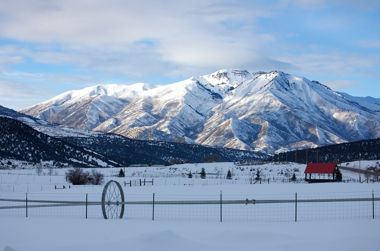 Winter Scene, Rural Utah