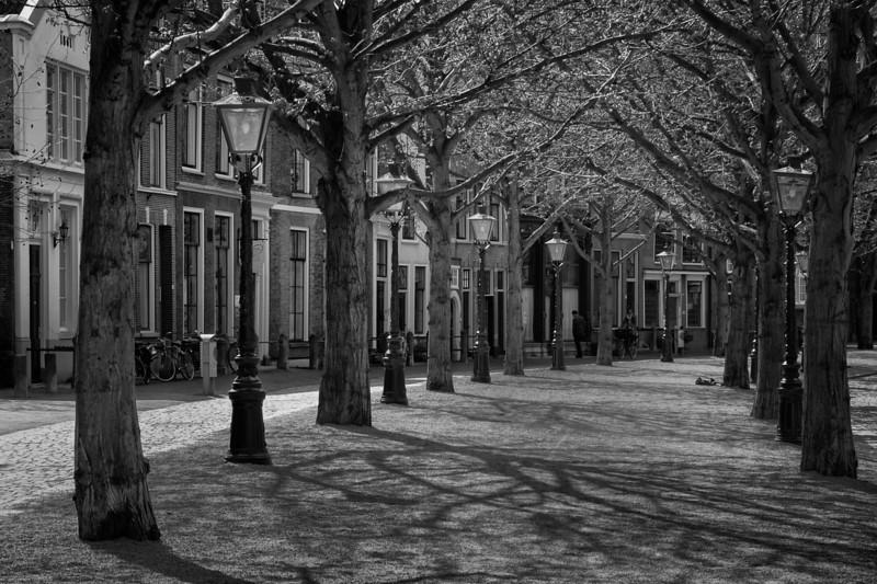 Leiden Street Scene