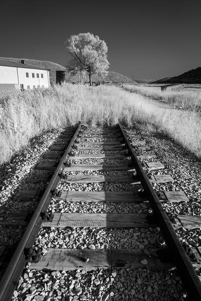 Vanishing Lines