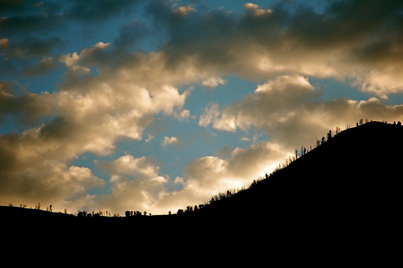 Tree-Fringed Hill