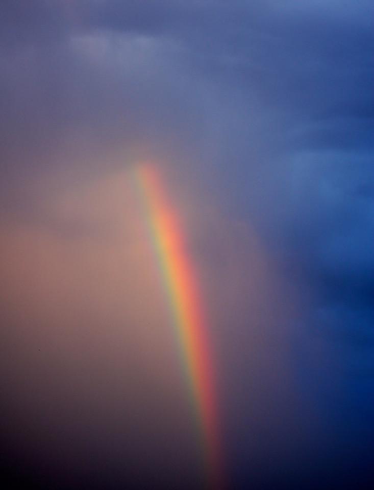 Segment of the Spectrum