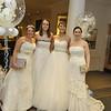017 - Wear Your Wedding Dress Again 2015 - 271115