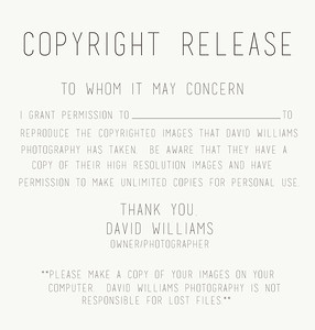 copyright release form
