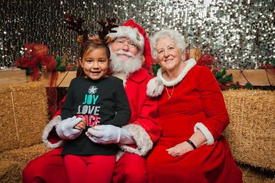 Christmas Roundup 2018-20