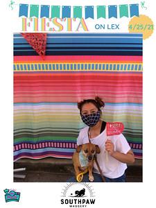 Fiesta_on_Lex_photo_27