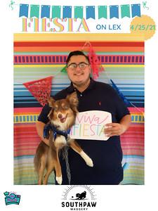 Fiesta_on_Lex_photo_20
