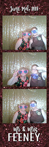 FeeneyWeddingPhotobooth--ADHPhotography2018 (4)