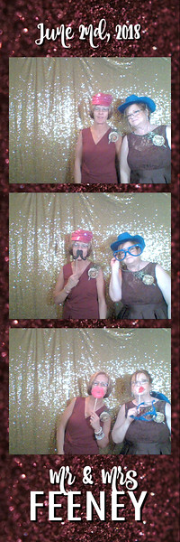 FeeneyWeddingPhotobooth--ADHPhotography2018 (10)