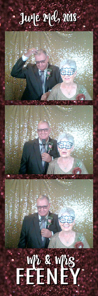 FeeneyWeddingPhotobooth--ADHPhotography2018 (12)