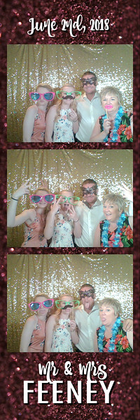 FeeneyWeddingPhotobooth--ADHPhotography2018 (9)