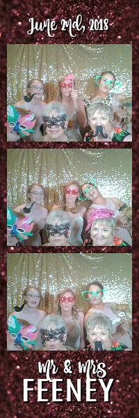 FeeneyWeddingPhotobooth--ADHPhotography2018 (8)
