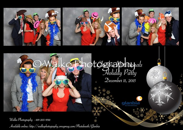 Glanbia Nutritional Holiday Party 2015