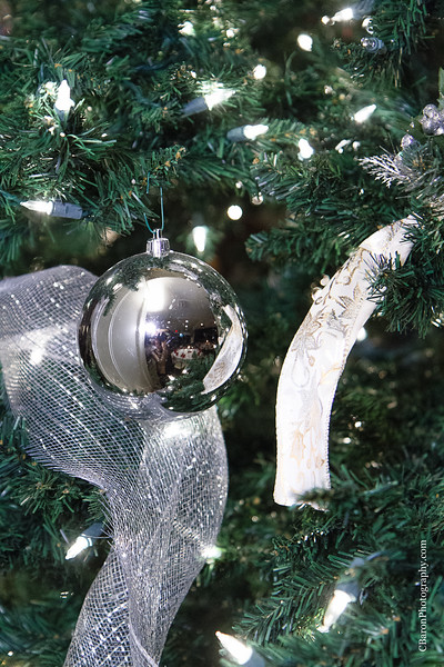 C-Baron-Photo-Lake-Ofite--Pine-Forest-Country-Club-Christmas-2014-115