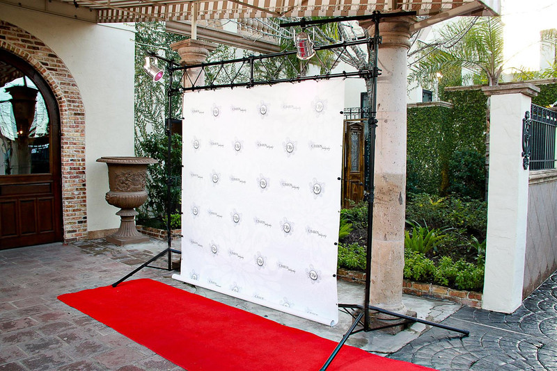 This set up works well for weddings, Christmas Parites, Ladies' Luncheons - just about any event that needs some blingage!  Ask us about customized backgrounds for your red carpet service - really make the service rock!