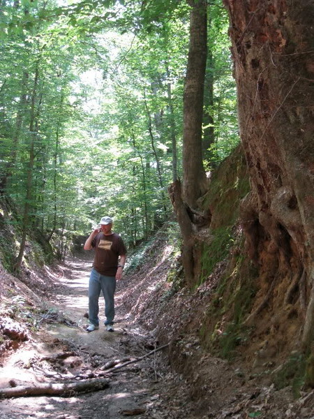 Sunken Trace on the cell phone