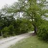 Loop 3, CR 350