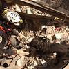 New York, NY, September 13, 2001 -- Urban Search and Rescue teams continue the search for survivors amidst the wreckage at the World Trade Center. <br /> <br /> Photo by Andrea Booher/ FEMA News Photo