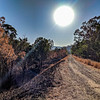 Cycling along the bushfire affected area of BVRT
