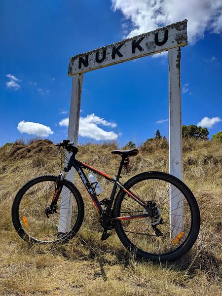 Nukku lean on the BVRT between Blackbutt and Yarraman