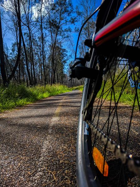 Bikeway in Boondall Wetlands