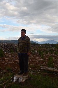 Don Pedro Suarez, a Mapuche, observing the deforestation and plantations surrounding his community in the Bio-Bío region. These are causing biodiversity loss and water shortages making the future uncertain. Along with his community, Don Pedro has been in a long struggle against forestry, pulp and hydropower companies in order to protect their sacred sites and their way of life. They are actively engaged in conserving local biodiversity through their traditional practices and traditional pesticide free agriculture.
