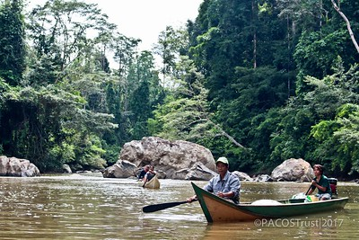 5. The forests and rivers provide livelihoods