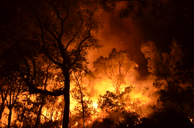 Wildfires in central Portugal