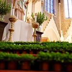 St. Patrick's Day Mass 2016
