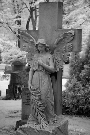 An Angel in Beechwood Cemetary