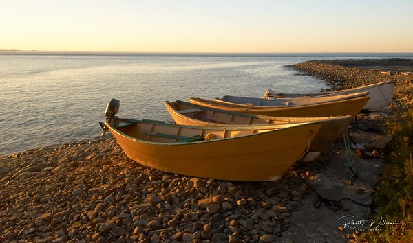 Dories at Long Eddy Point