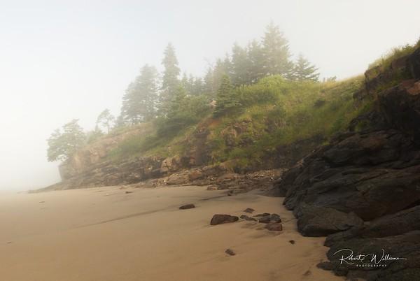 Seal Cove Beach in the Fog