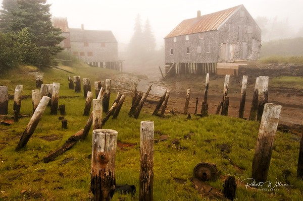 Old Building Stilts, Seal Cove